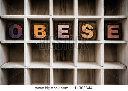 Obese Concept Wooden Letterpress Type In Drawer
