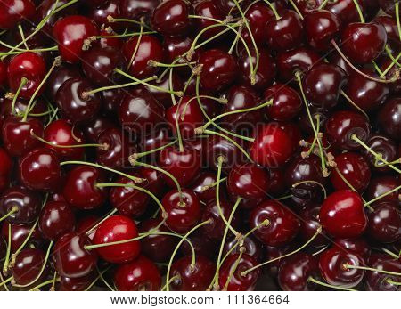 Perfect Cherries