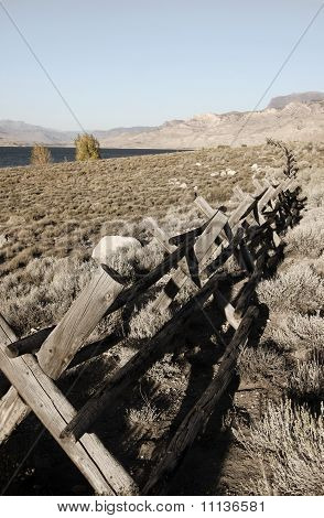 Old log Fence