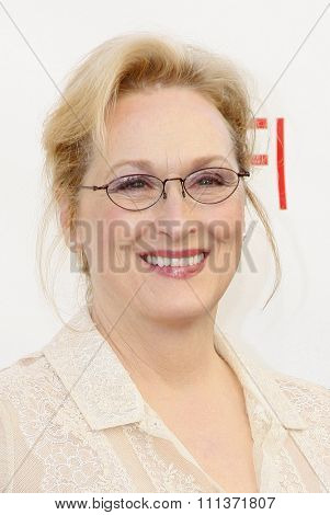 Meryl Streep at the 40th AFI Life Achievement Award Honoring Shirley MacLaine held at the Sony Studios in Los Angeles, United States, 070612.