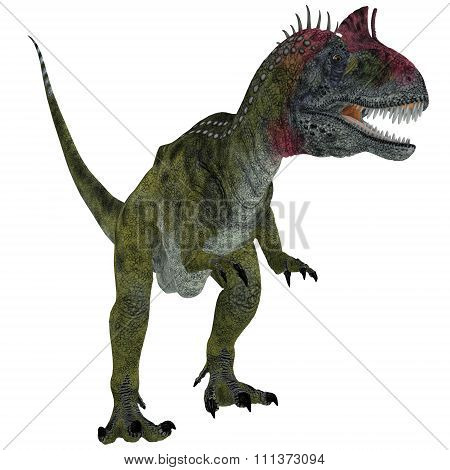 Cryolophosaurus On White