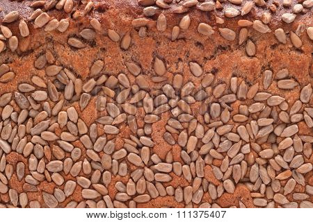Seed Bread Texture