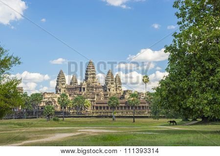 Ancient temple Angkor wat on a sunny day with horse