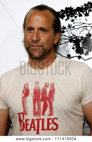 Peter Stormare attends the Los Angeles Premiere of