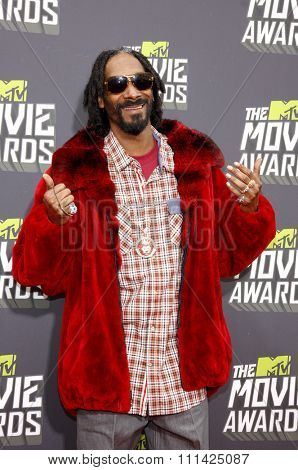 Snoop Lion at the 2013 MTV Movie Awards held at the Sony Pictures Studios in Los Angeles, United States, 14/04/13.