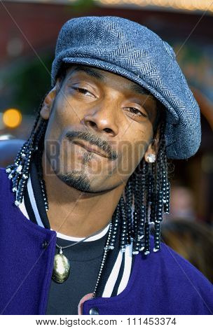 Snoop Dogg at the Los Angeles premiere of