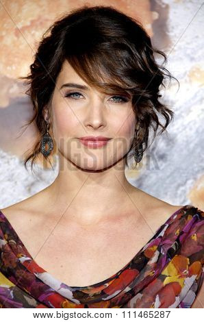 Cobie Smulders at the Los Angeles premiere of 'American Reunion' held at the Grauman's Chinese Theater in Hollywood on March 19, 2012.