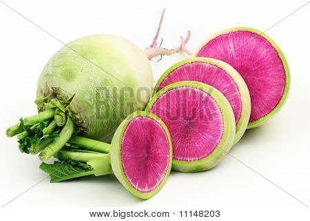 party loyalty radish on white background