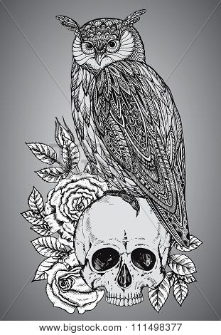 Vector Illustration With Hand Drawn Ornate Owl On Human Skull