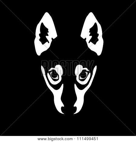Illustration Of Wolf Face On Black Background