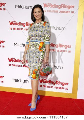 Mimi Rogers at the Los Angeles premiere of 'The Wedding Ringer' held at the TCL Chinese Theater in Hollywood on January 6, 2015.