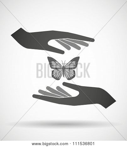 Two Hands Protecting Or Giving A Butterfly