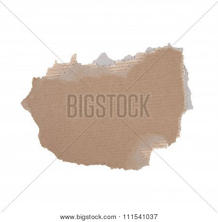 Torn Piece Of Cardboard On White Background..