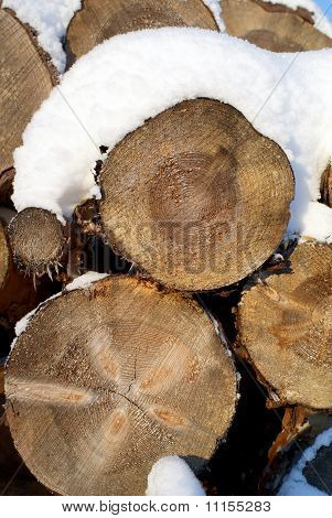 Pine Logs Snow Background Vertical