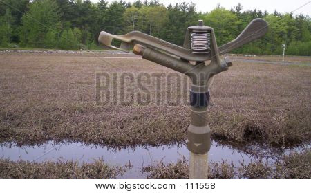 Irrigation Sprinkler