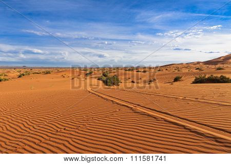 footprints in the sand, Sahara