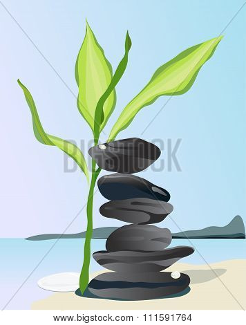Bamboo Leaves And Stone Pile