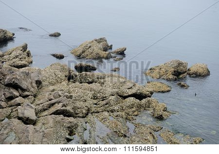 Rocky Coast of Yantai China