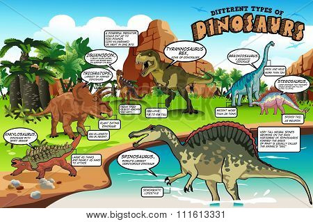 Different Types Of Dinosaurs Infographic