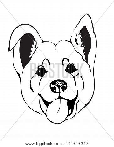 muzzle dogs