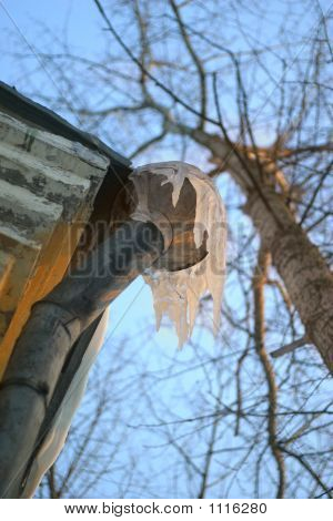Icicles On A Drainpipe