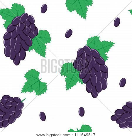 Seamless Pattern with Black Grapes on White Background