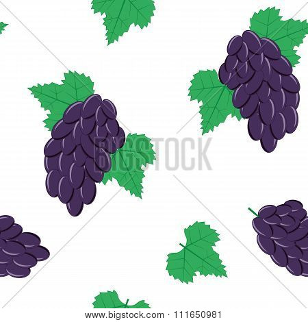 Seamless Pattern with Bunches of Black Grapes on White Background