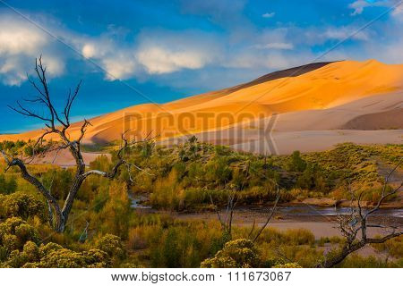 Desert Sunrise Colorado Sand Dunes