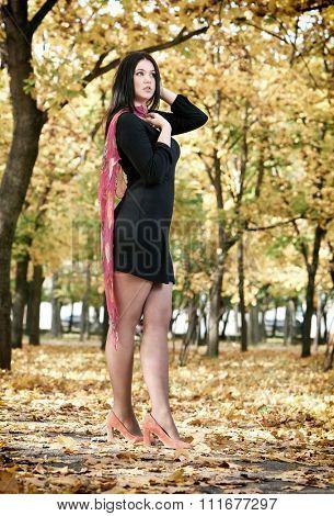 beautiful woman in black dress,  autumn city park