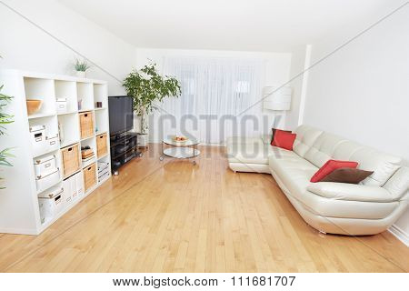 Beautiful cozy modern apartment. Real estate concept.