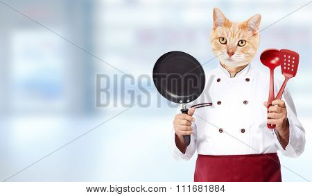 Ginger cat chef over abstract blue background.