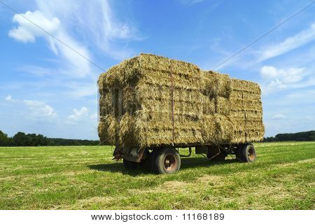 Bales Of Hay On A Trailer Standing In A Field