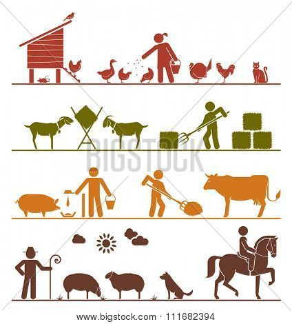 Pictogram icons presenting feeding of domestic animals on the farm. Feeding chickens and poultry, feeding goats with hay, feeding pigs and cattle, grazing sheep, riding horse. Agriculture icons.