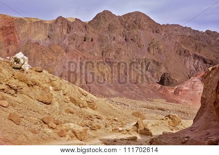 Dry stone desert near the southern seaside resort of Eilat, Israel.
