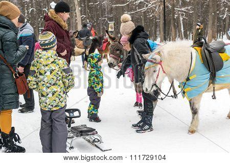 Horse Ride Activity For Children In Winter