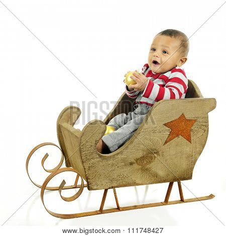 An adorable baby boy delightedly holding a gold Christmas bulb while sitting in a rustic sleigh waiting for a ride.  On a white background.
