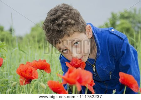 In The Summer On The Curly Boy Sniffing Poppies.