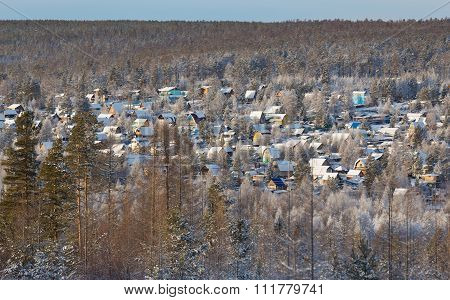 Colored Cottages  In A Winter Forest