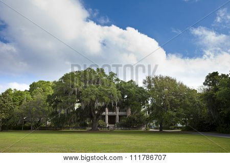Live oaks and homes in the historic district of Beaufort, South Carolina