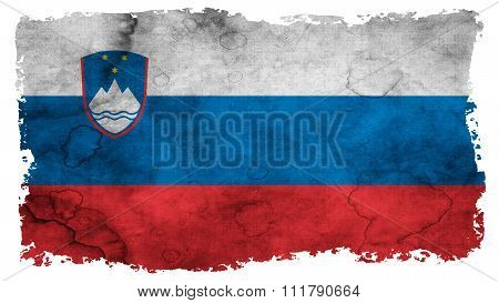 Flag of Slovenia, Slovenian Flag painted on paper texture