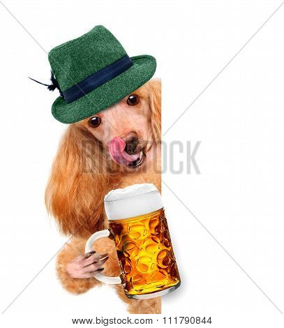 dog with a beer mug