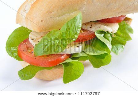 Sandwich with tomato and mozzarella