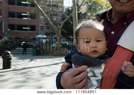 Young Asian Kid In Baby Carrier Outdoors