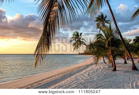 Sunset at Beach at the Bahamas