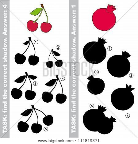 Cherry and pomegranate. Find true correct shadow.