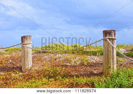 Rope fence marking the beach plants area in Florida