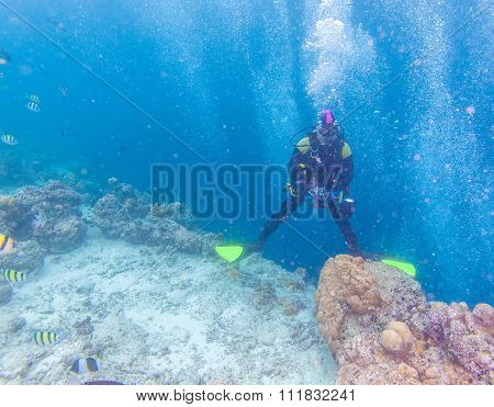Asian Man With Underwater Boxed Camera