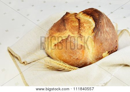 Round Bread Loaf