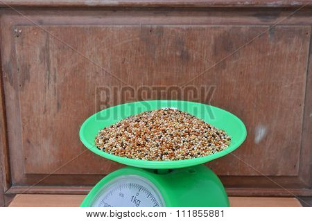 bird food on green weighing scale tray