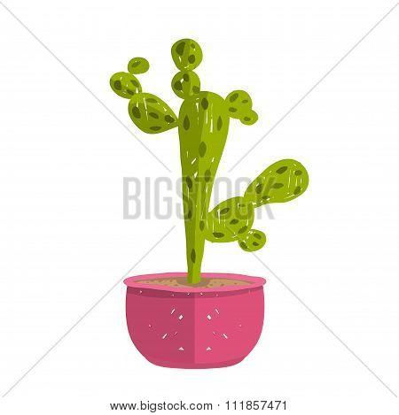Green indoor cactus plant in pot